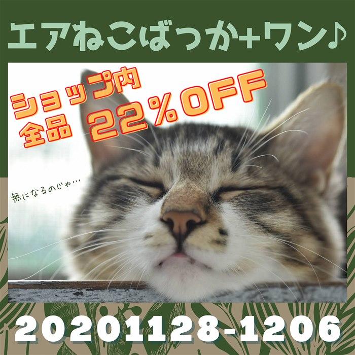 自主的に【エアねこばっか+ワン♪2020】開催!びーにゃんくらぶ